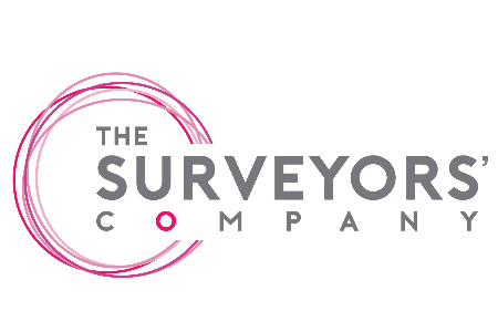 The Surveyors' Company (solihull) Ltd